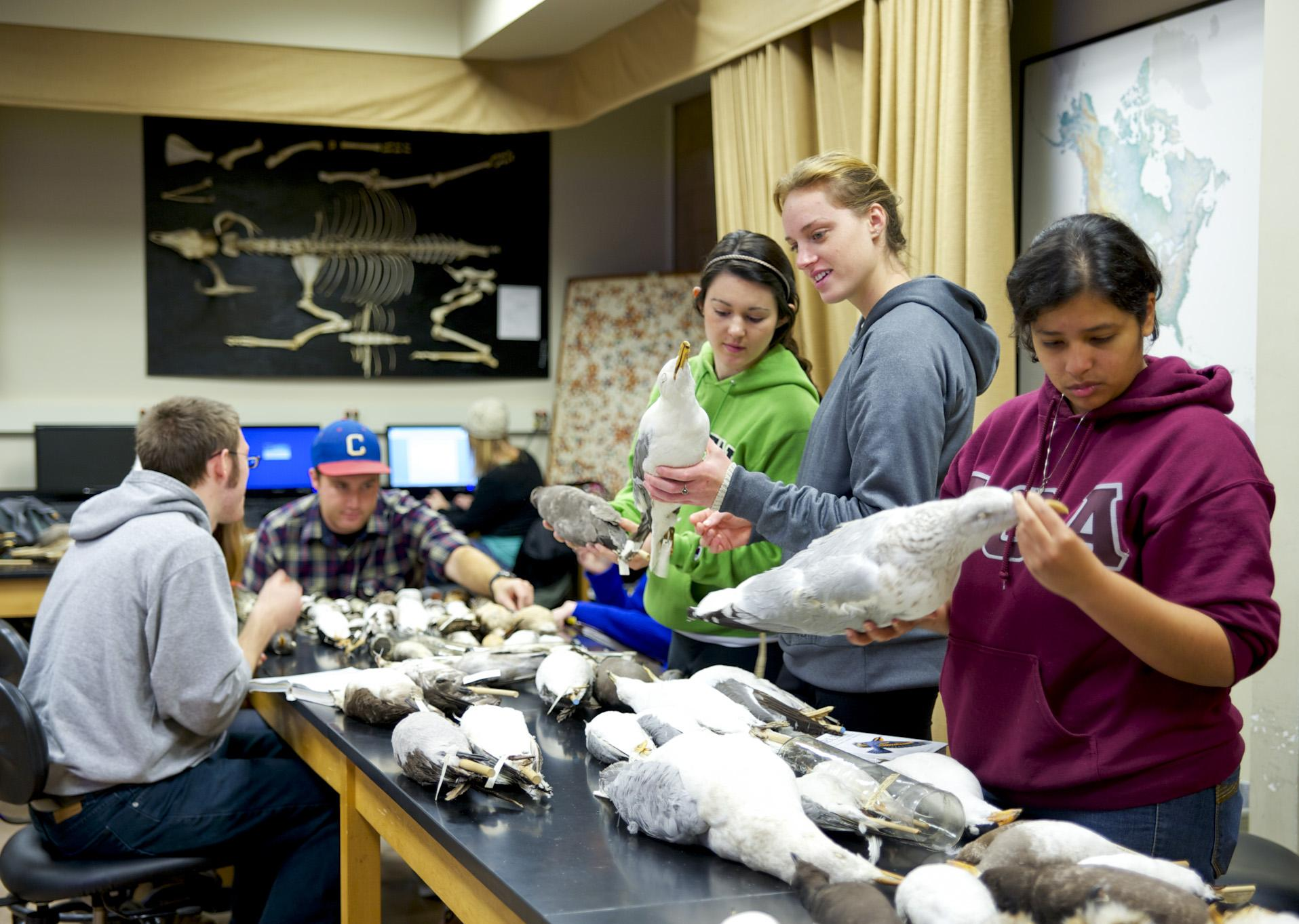 HSU Students in Wildlife class
