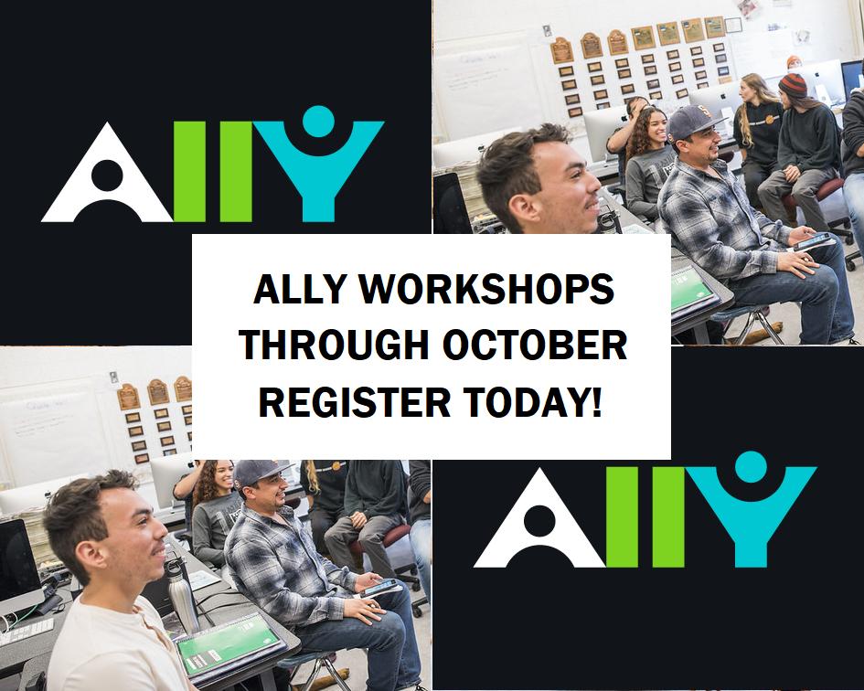 Ally Workshops