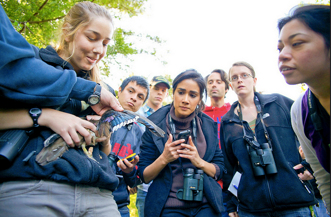 Wildlife students examining a Wood Duck